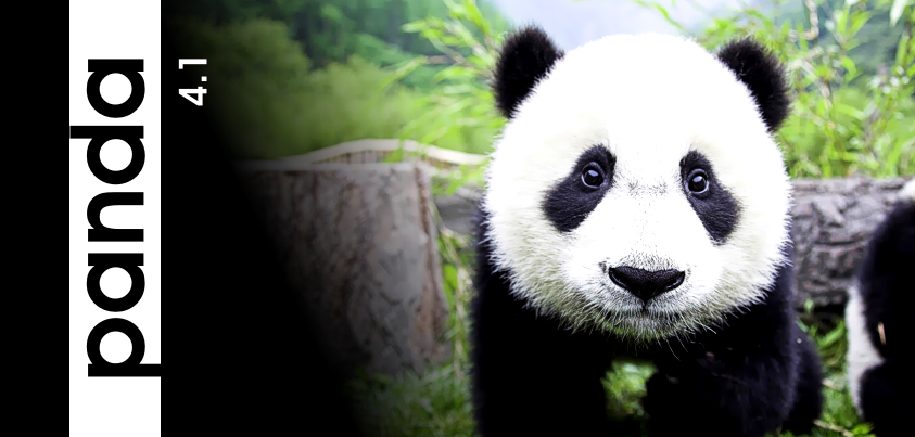 Aktualizacja algorytmu Panda 4.1